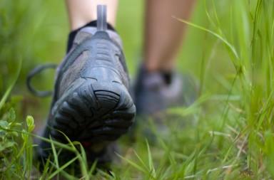 chaussures-de-marcche-567205