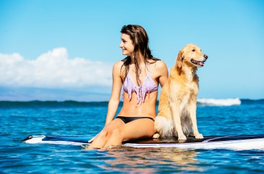 Attractive Young Woman Surfing with her Dog. Sharing surfboard with Golden Retriever.